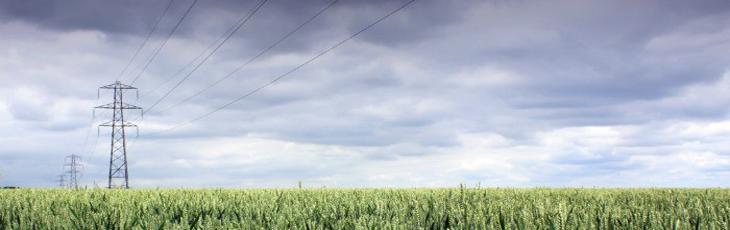 Pylon in a corn field
